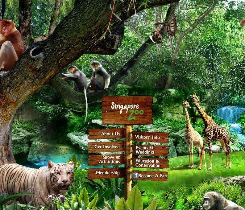 حديقة حيوان سنغافورة ( Singapore Zoo )